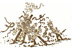 Domaine BURGAUD